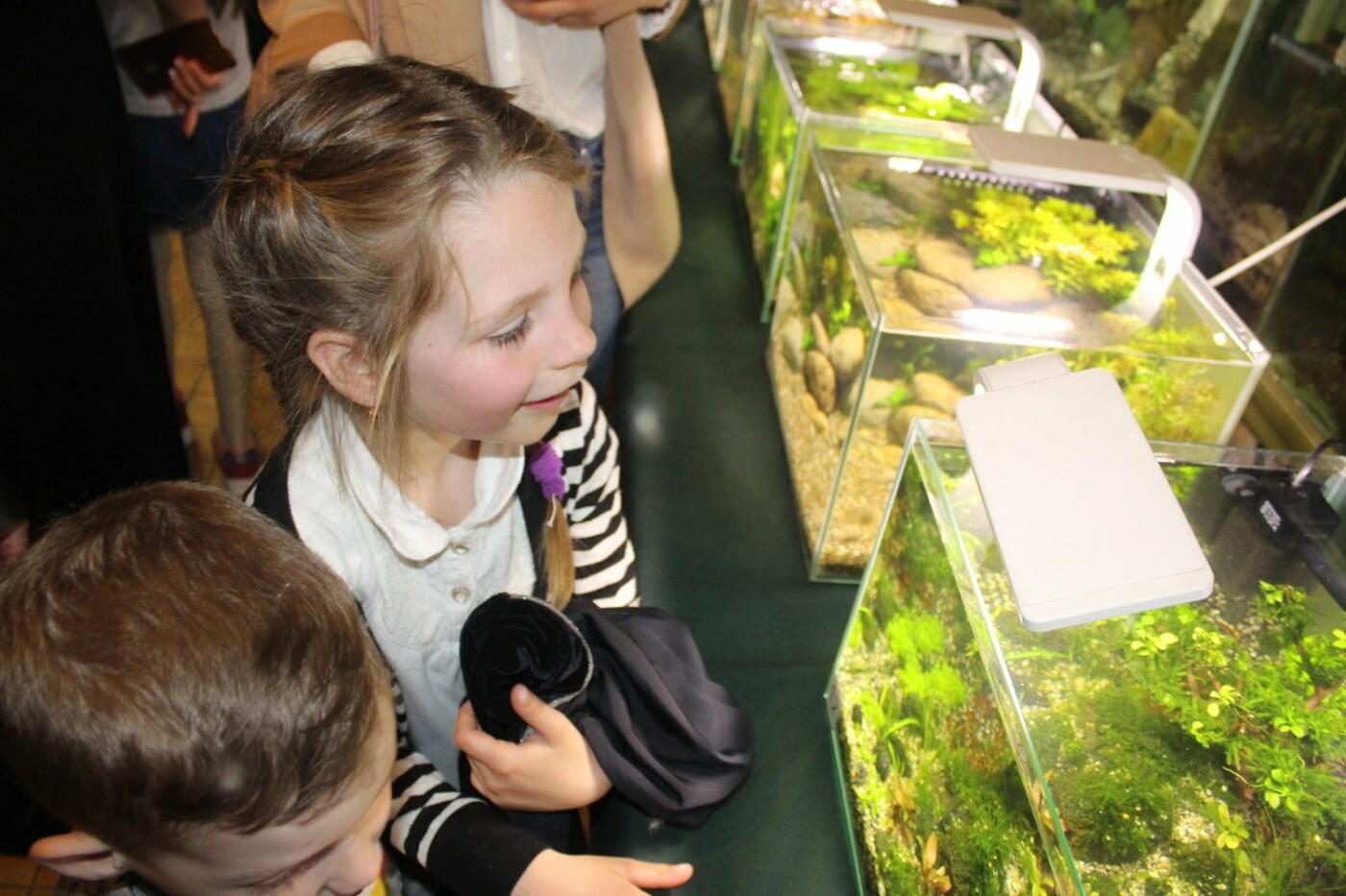 В Ужгороді відкрилась виставка нано-акваріумів з весняними мотивами (ФОТО), фото-2