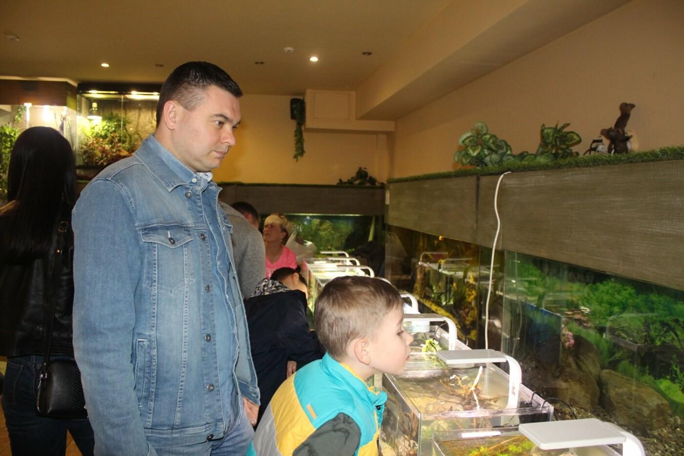 В Ужгороді відкрилась виставка нано-акваріумів з весняними мотивами (ФОТО), фото-4
