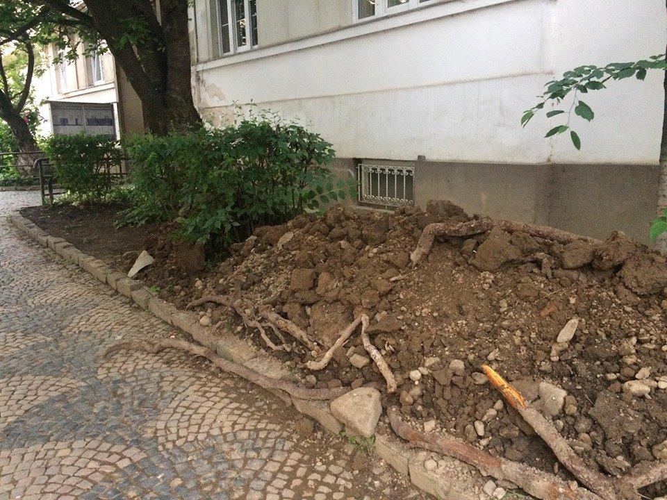 В Ужгороді управління ДАБК зупинило ремонтні роботи у районі Галагова, які викликали обурення у соцмережі (ФОТО), фото-4