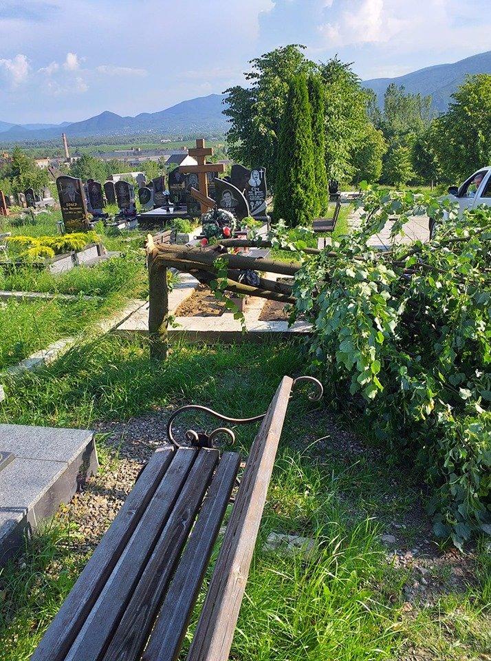 У мережі показали наслідки буревію в Хусті, який повалив десятки дерев та 20-тонну трубу (ФОТО, ВІДЕО), фото-8