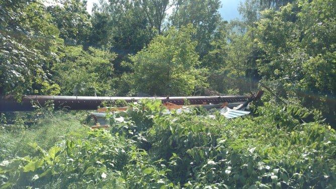 У мережі показали наслідки буревію в Хусті, який повалив десятки дерев та 20-тонну трубу (ФОТО, ВІДЕО), фото-10