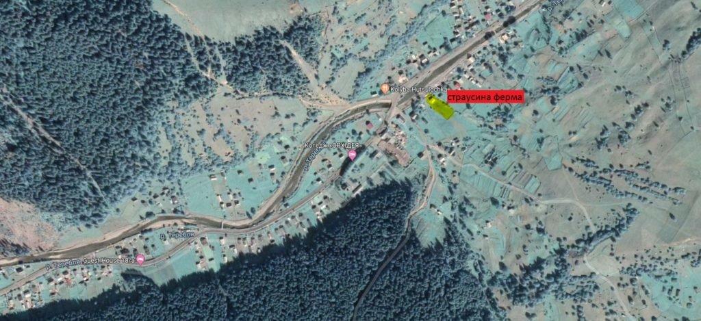 """На Закарпатті недалеко від озера """"Синевир"""" відкрилась страусина ферма (ФОТО), фото-6"""
