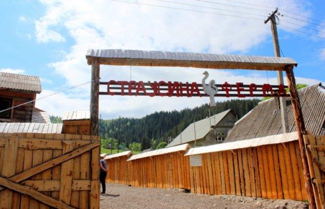 """На Закарпатті недалеко від озера """"Синевир"""" відкрилась страусина ферма (ФОТО), фото-1"""