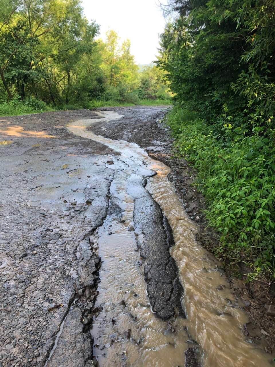 В гірських селах Закарпаття через потужні зливи підтопило дорогу та десятки дворогосподарств (ФОТО), фото-3