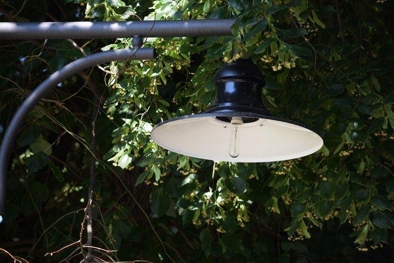 В Ужгороді невідомі  розбили плафон нового світильника на набережній Незалежності (ФОТО), фото-3