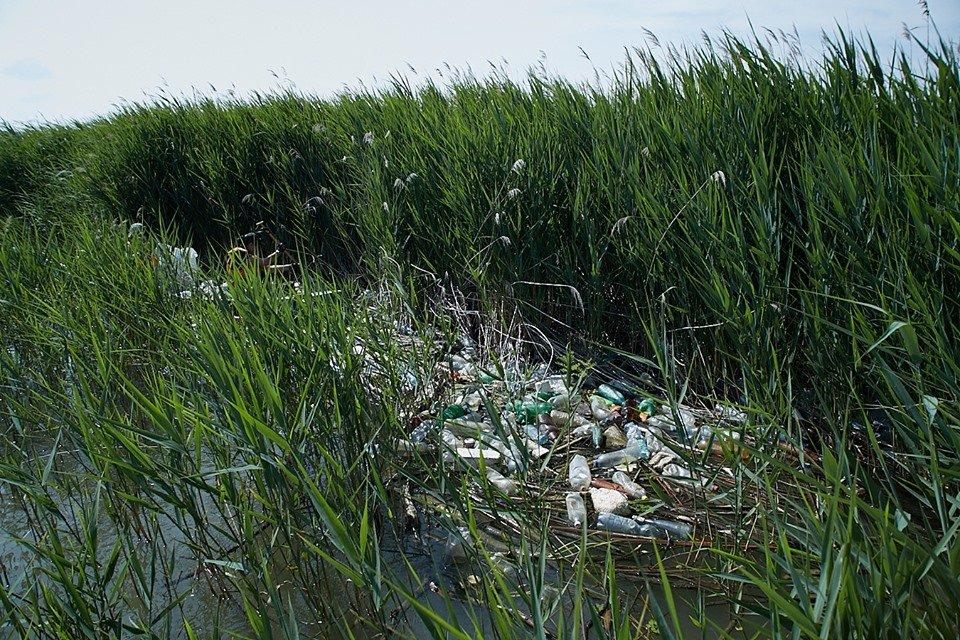 3000 кг пластику: угорські волонтери показали шокуючі результати екологічної акції PET Kupa на Тисі (ФОТО, ВІДЕО), фото-19