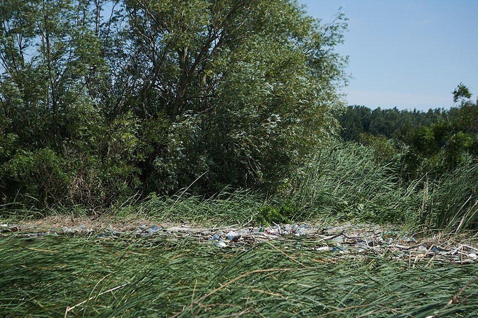 3000 кг пластику: угорські волонтери показали шокуючі результати екологічної акції PET Kupa на Тисі (ФОТО, ВІДЕО), фото-20