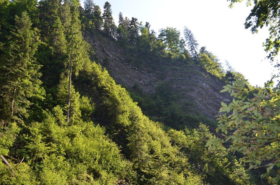«Свидовецькі скелі»: На Закарпатті існує унікальна гідрологічна пам'ятка природи (ФОТО), фото-1