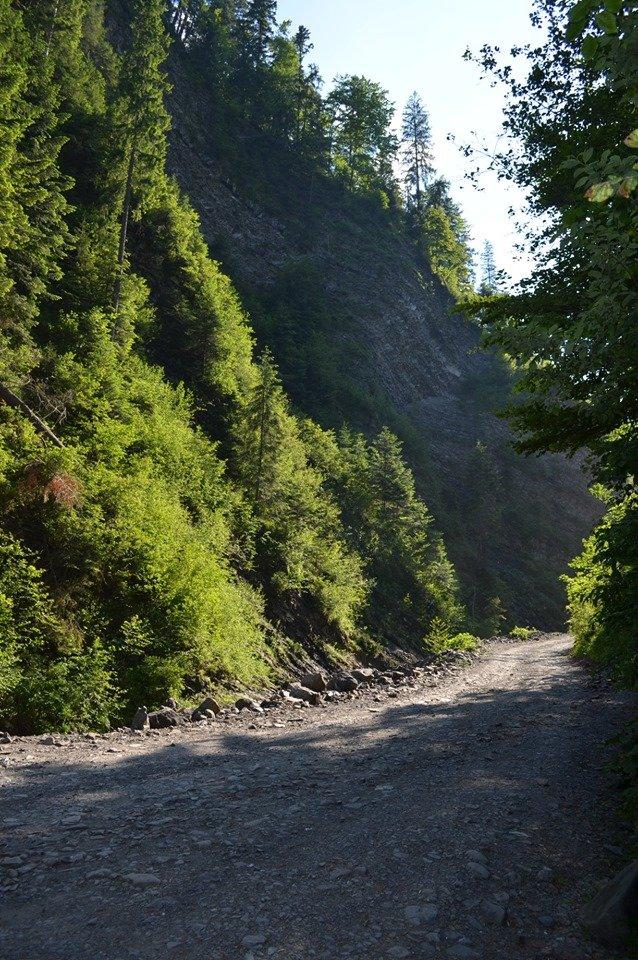 «Свидовецькі скелі»: На Закарпатті існує унікальна гідрологічна пам'ятка природи (ФОТО), фото-2
