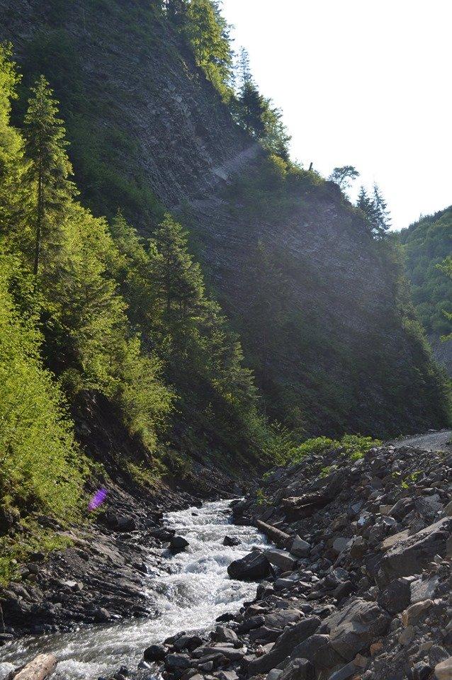 «Свидовецькі скелі»: На Закарпатті існує унікальна гідрологічна пам'ятка природи (ФОТО), фото-3