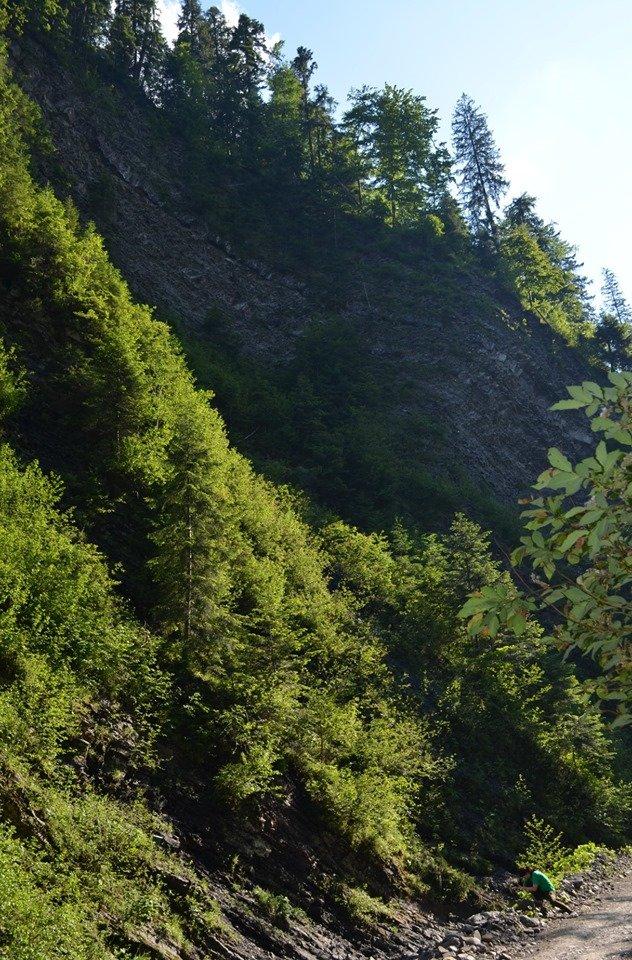 «Свидовецькі скелі»: На Закарпатті існує унікальна гідрологічна пам'ятка природи (ФОТО), фото-4
