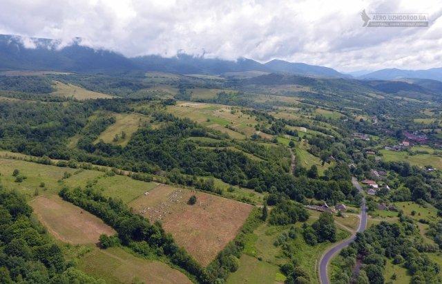 Гірське закарпатське село показали з висоти пташиного польоту (ФОТО), фото-2