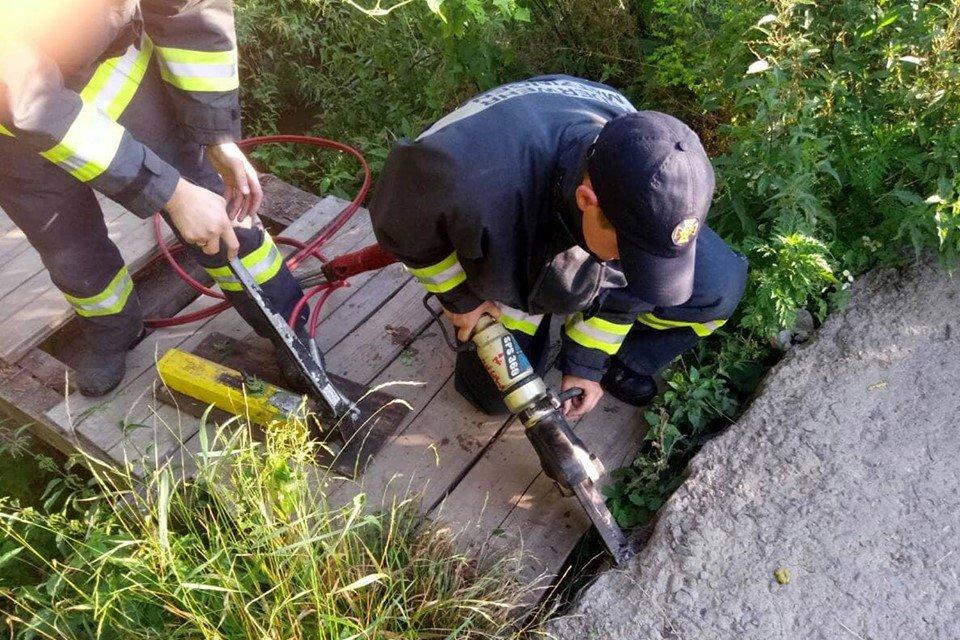 Допомога чотирилапим: Закарпатські рятувальники визволили кошеня, що застрягло у кам'яній брилі (ФОТО), фото-2