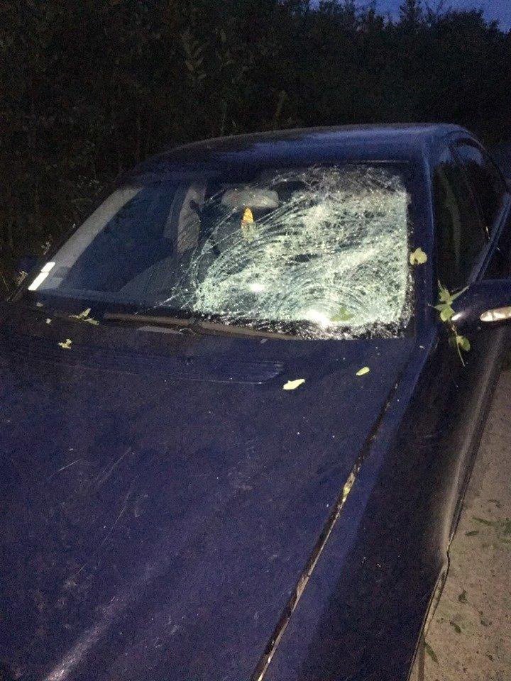 На Закарпатті під колесами «Mercedes» загинув 17-річний велосипедист (ФОТО), фото-1