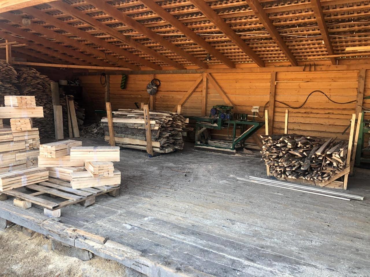 На Закарпатті СБУ викрило лісництво на розкраданні деревини - лісничому оголосили підозру (ФОТО), фото-5