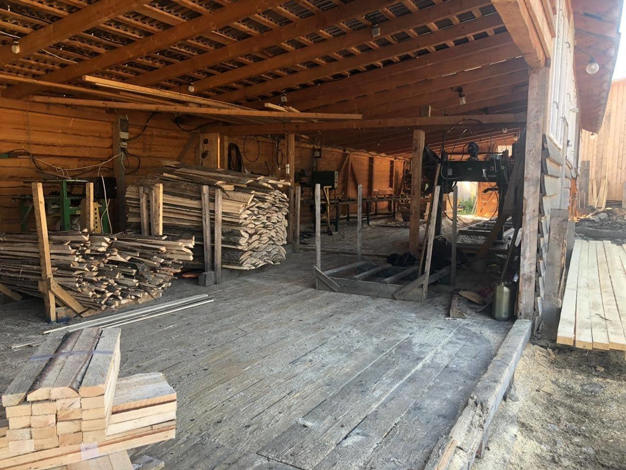 На Закарпатті СБУ викрило лісництво на розкраданні деревини - лісничому оголосили підозру (ФОТО), фото-3