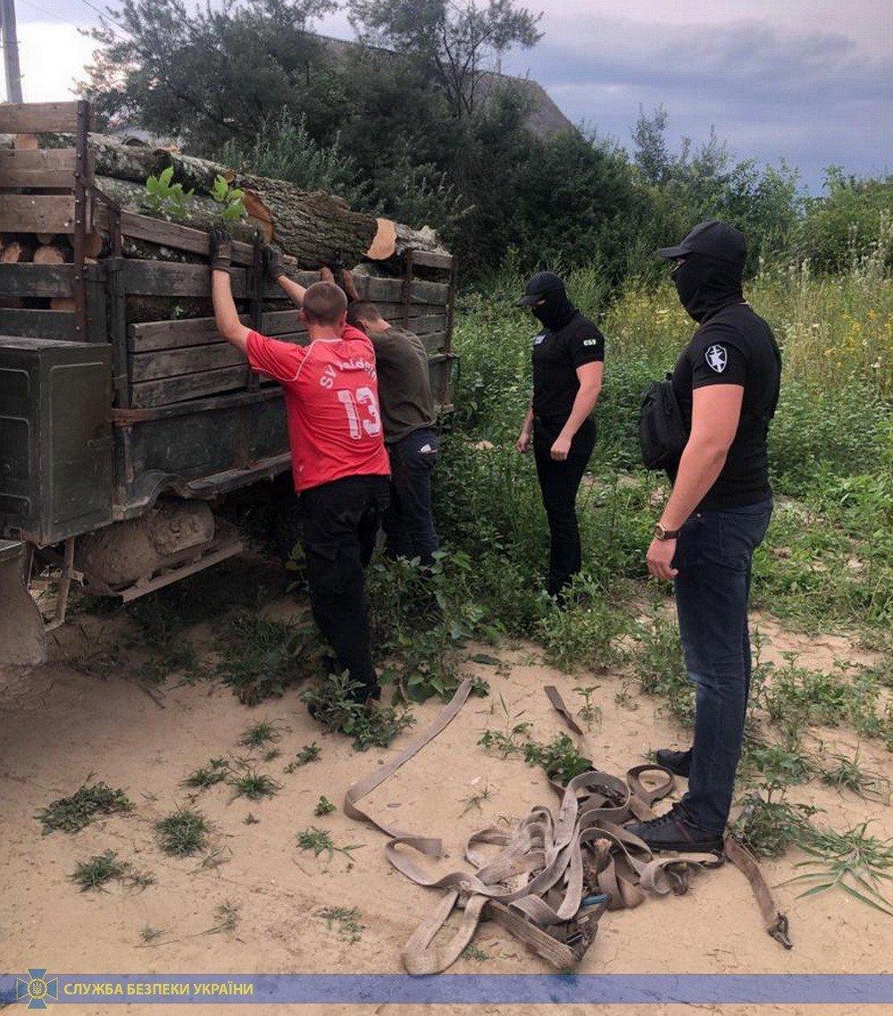 На Закарпатті на отриманні хабара затримали посадовця лісогосподарства (ФОТОФАКТ), фото-1