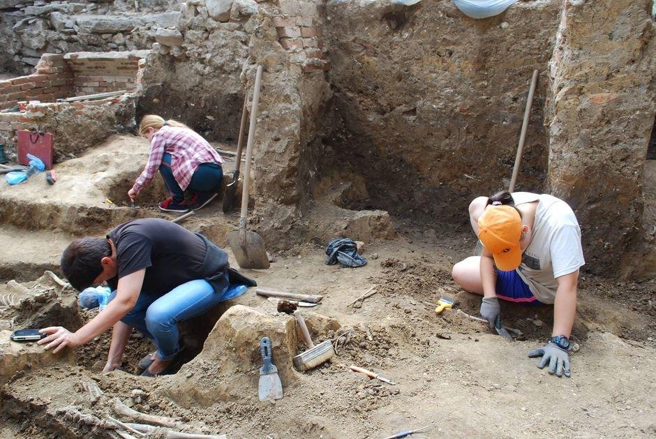 Під час розкопок в Ужгородському замку вже виявлено понад 50 цікавих артефактів (ФОТО), фото-1