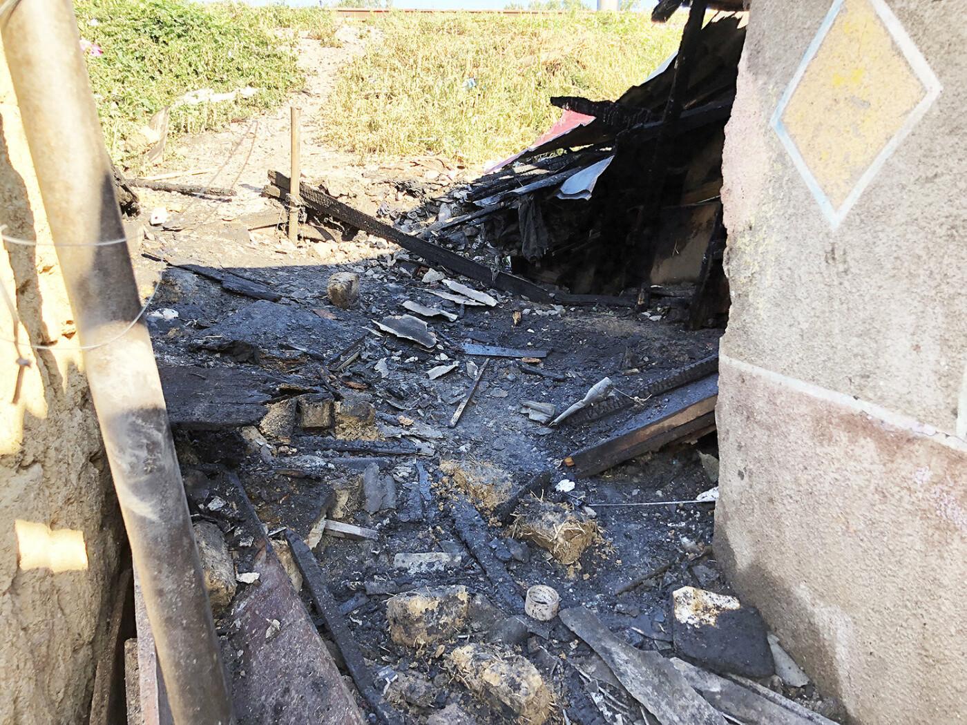 В Ужгороді пожежа знищила дровітню, а будинок врятували вогнеборці (ФОТО), фото-2