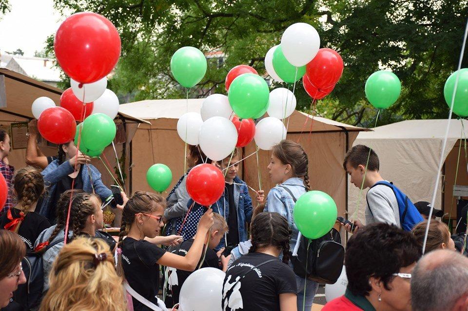 Гастрономічно-культурний фестиваль Hungary Fest в Ужгороді знайомить з угорськими традиціями (ФОТО), фото-5