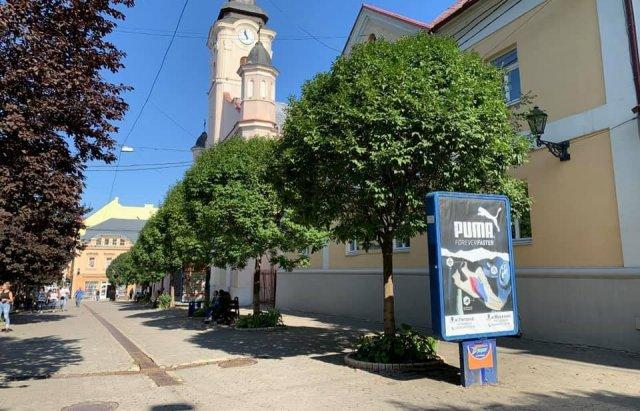 Ужгородець закликає владу не продовжувати дозвіл на розміщення сіті-лайтів у центрі міста, фото-3