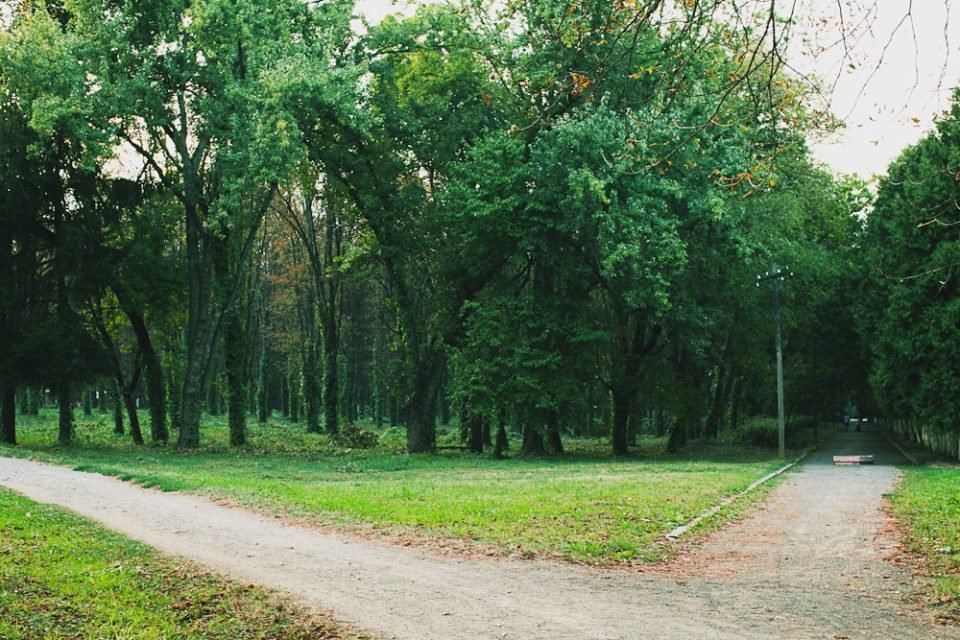 Підготовка до Uzhhorod Half Marathon: кращі місця для пробіжок в Ужгороді (ФОТО), фото-7