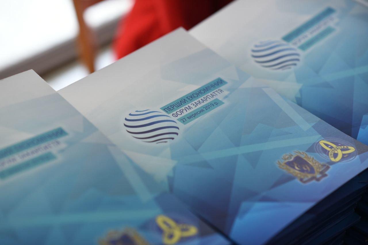Бізнесмени, банкіри, влада та освітяни шукали шлях до Закарпатського економічного дива (ФОТОРЕПОРТАЖ), фото-5