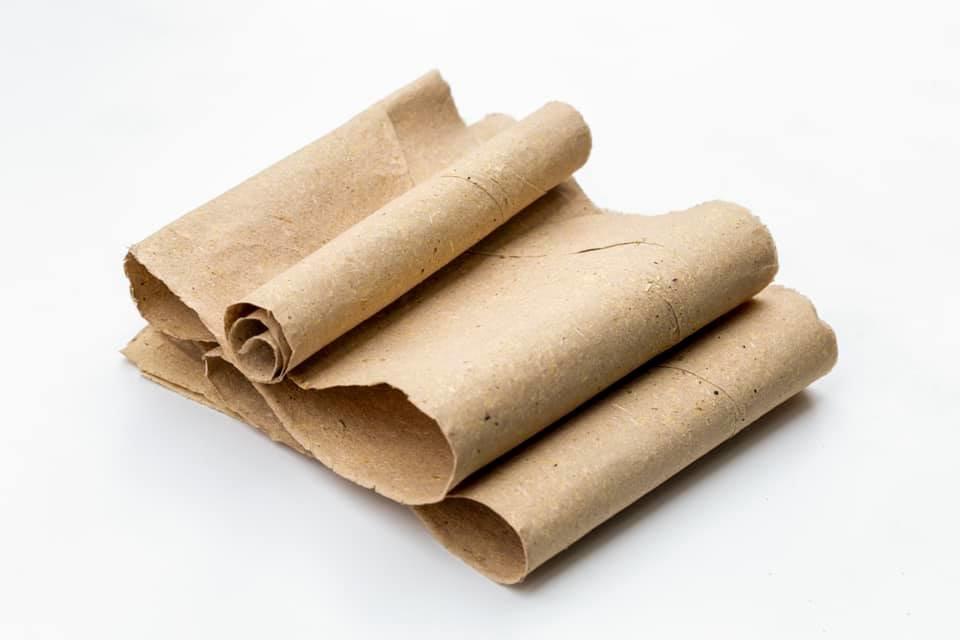 Винахідник із Закарпаття показав, як виглядає папір з опалого листя та розповів про його переваги (ФОТО), фото-2