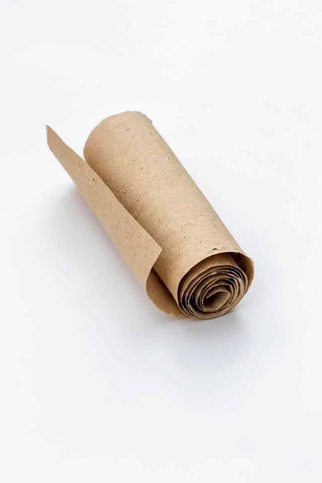 Винахідник із Закарпаття показав, як виглядає папір з опалого листя та розповів про його переваги (ФОТО), фото-3