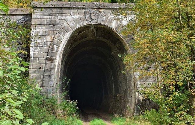 У мережі показали ще один закинутий тунель на Закарпатті - довжиною понад 300 м (ФОТО, ВІДЕО), фото-3