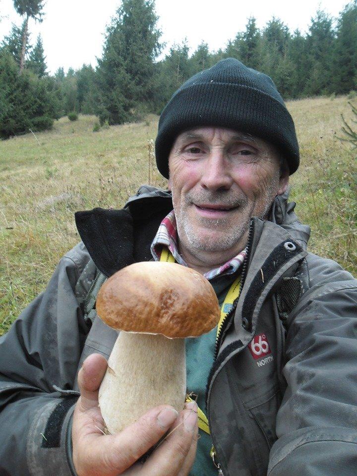 Осіннє полювання: закарпатці поділились грибними трофеями у мережі (ФОТО), фото-5