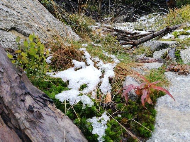Зустріч осені із зимою: У словацьких Татрах випав перший сніг (ФОТО), фото-2