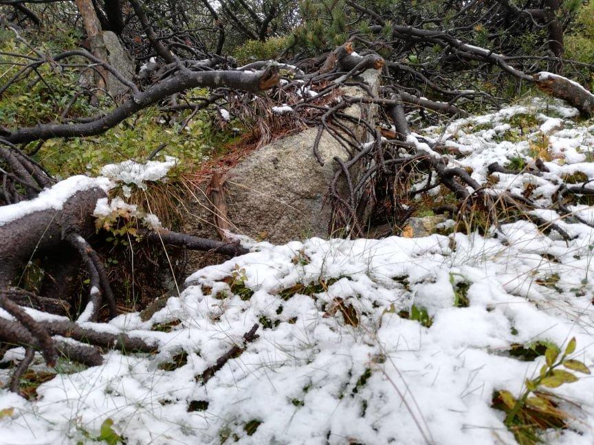 Зустріч осені із зимою: У словацьких Татрах випав перший сніг (ФОТО), фото-5