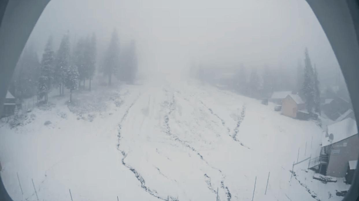Зима прийшла: Українські Карпати та гірськолижні курорти вкрило снігом (ФОТО, ВІДЕО), фото-3