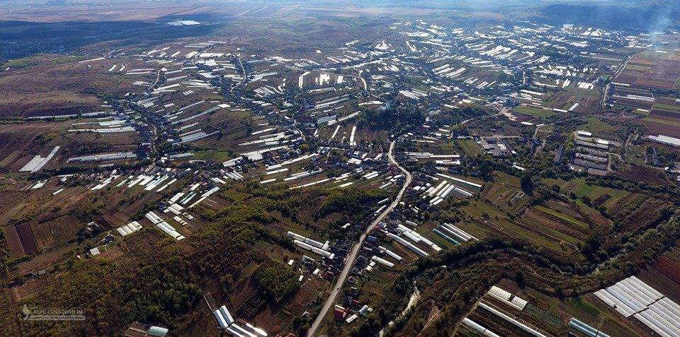 """У мережі показали з висоти """"поліетиленову долину"""" Закарпаття (ФОТО, ВІДЕО), фото-3"""