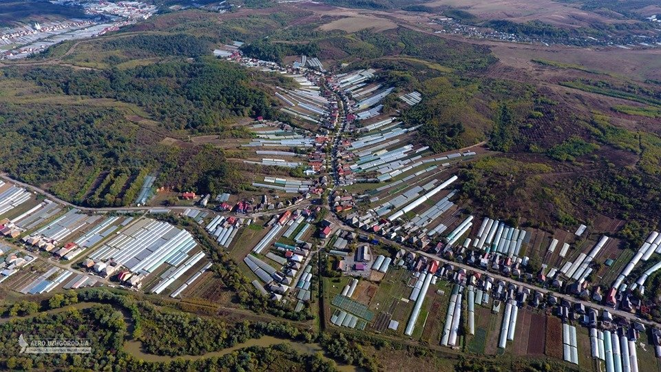 """У мережі показали з висоти """"поліетиленову долину"""" Закарпаття (ФОТО, ВІДЕО), фото-6"""