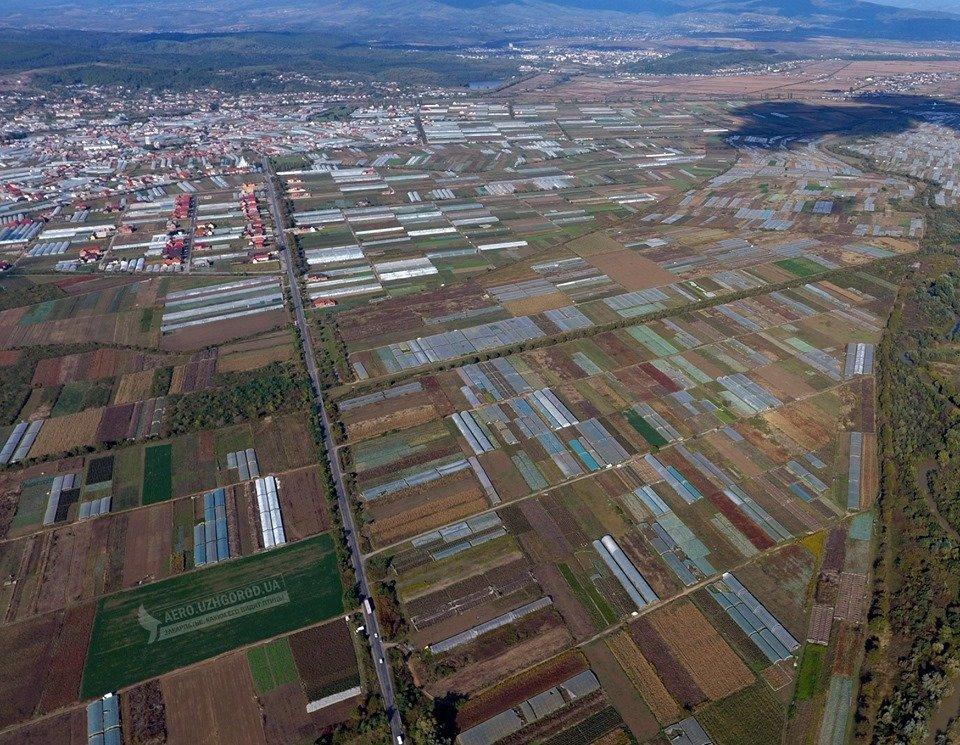"""У мережі показали з висоти """"поліетиленову долину"""" Закарпаття (ФОТО, ВІДЕО), фото-2"""