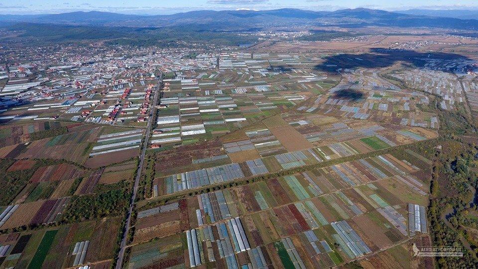 """У мережі показали з висоти """"поліетиленову долину"""" Закарпаття (ФОТО, ВІДЕО), фото-5"""