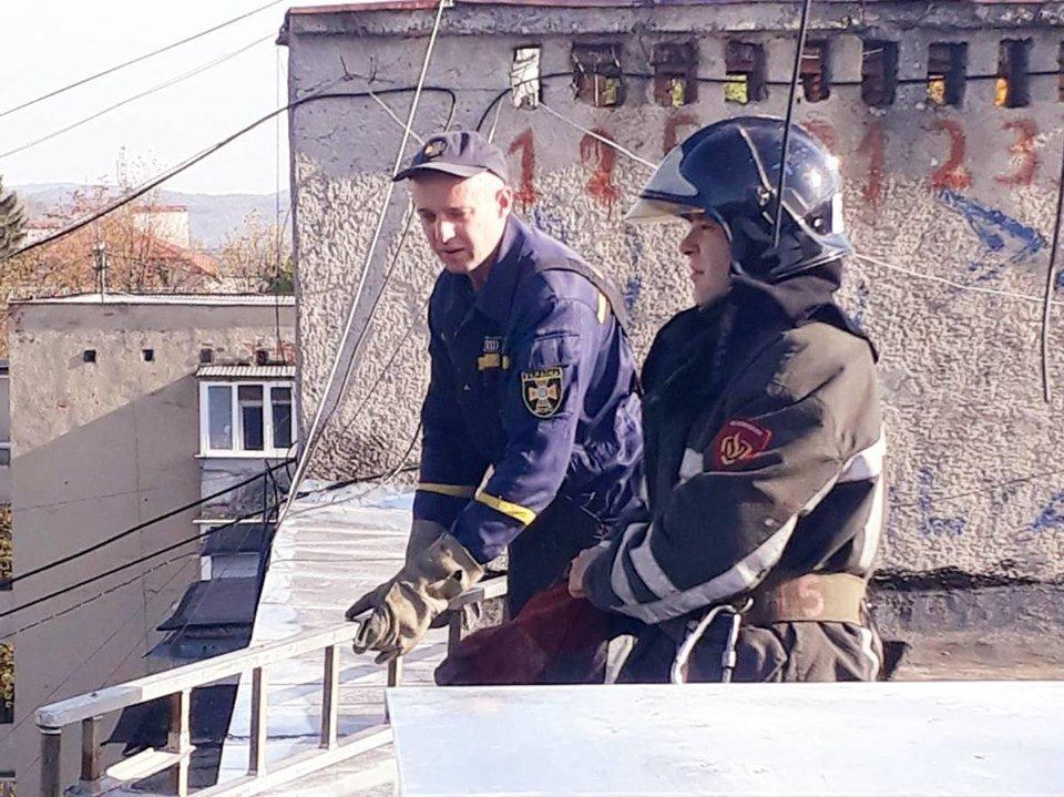 Закарпатські надзвичайники врятували кішку, яка дві доби просиділа на даху будинку (ФОТО), фото-1