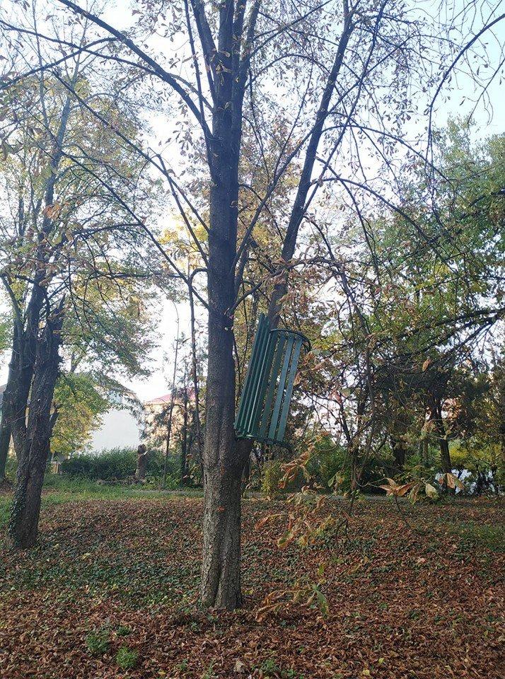 Чергова витівка хуліганів: в Ужгороді невідомі завісили лавицю на дерево (ФОТО) , фото-1