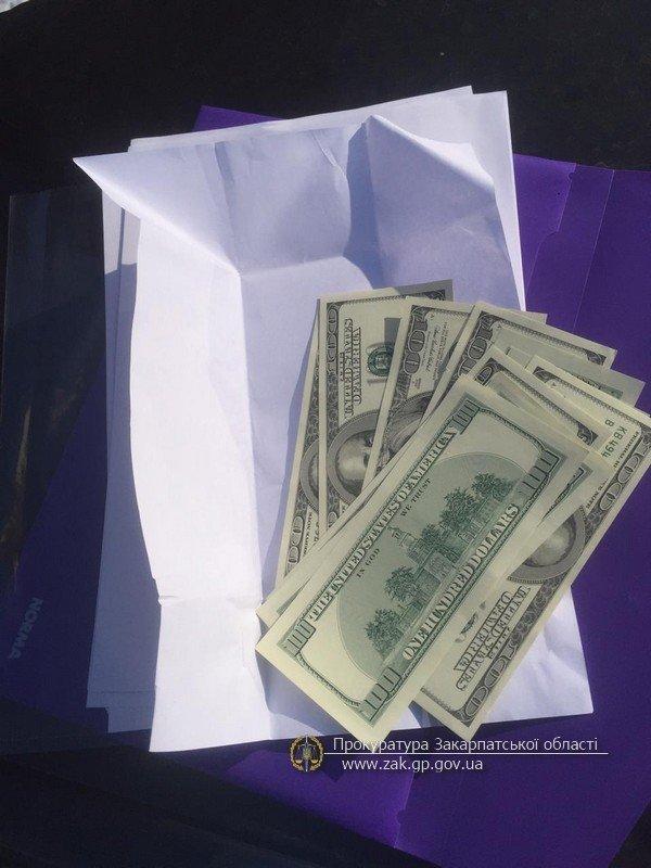 На Закарпатті затримали двох фальшивомонетників, які поширювали підроблені банкноти по території області (ФОТО), фото-1