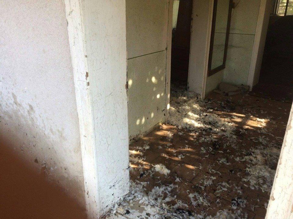 На Виноградівщині вогнеборці двічі на вихідних гасили пожежі , фото-1