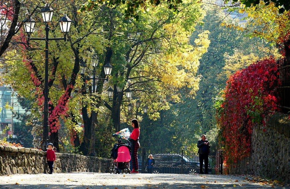 Ужгород в кольорах: Найпопулярніші фотолокації на тлі золотої осені (ФОТО), фото-4