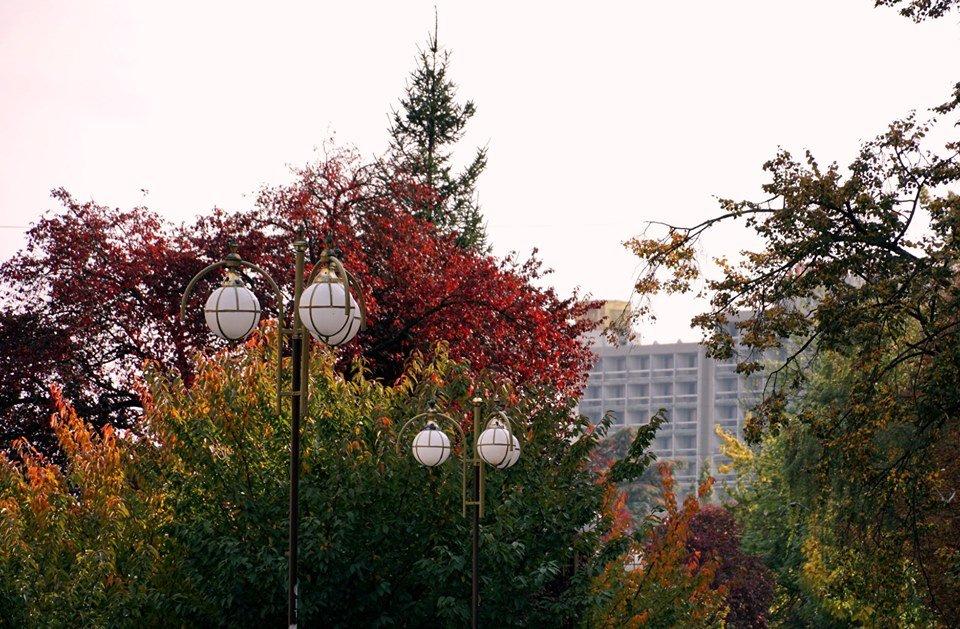 Ужгород в кольорах: Найпопулярніші фотолокації на тлі золотої осені (ФОТО), фото-7