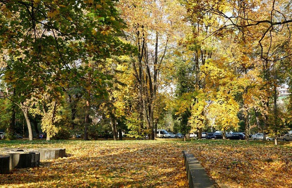 Ужгород в кольорах: Найпопулярніші фотолокації на тлі золотої осені (ФОТО), фото-8
