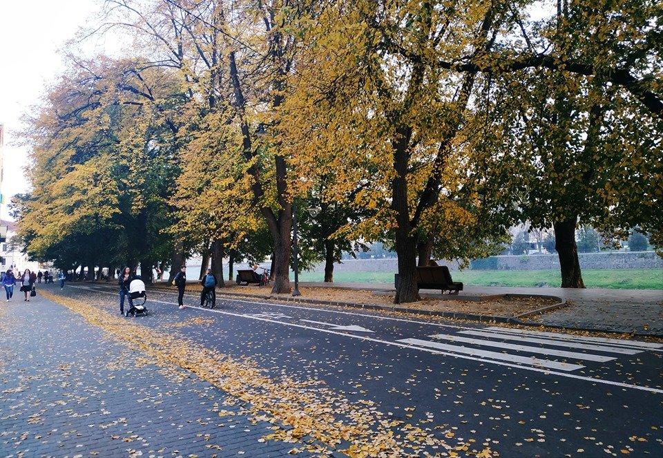 Ужгород в кольорах: Найпопулярніші фотолокації на тлі золотої осені (ФОТО), фото-9