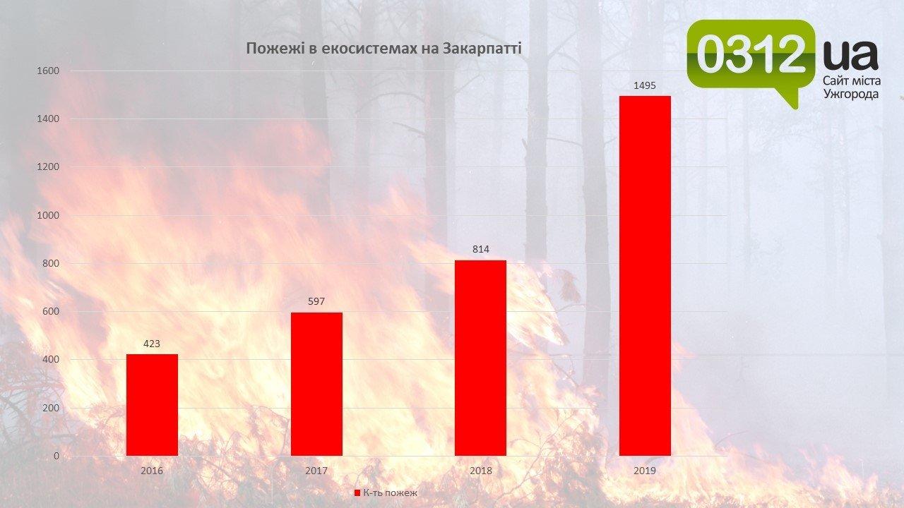 Сезонні пожежі на Закарпатті: законна відповідальність і людська безвідповідальність, фото-1
