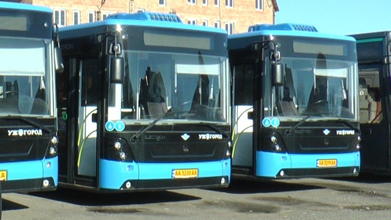 В Ужгороді з'явиться новий маршрут №24: курсуватиме із БАМу до мікрорайону Дравці (ВІДЕО), фото-1