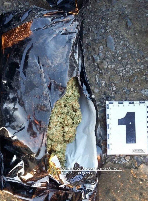 Іноземець віз контрабандою через Закарпаття до ЄС 2,7 кг канабісу (ФОТО), фото-3
