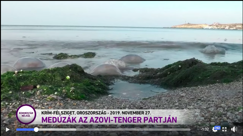 Угорський телеканал новин назвав Крим російським (ВІДЕО), фото-1